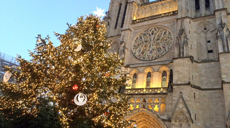cathedrale-sapin-w.jpg